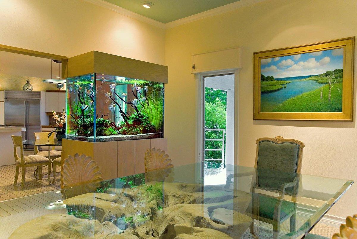 Запуск аквариума. Встроенный аквариум. Дизайн
