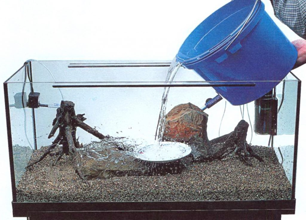 Запуск аквариума пошагово. Как лучше налить воду в новфй аквариум