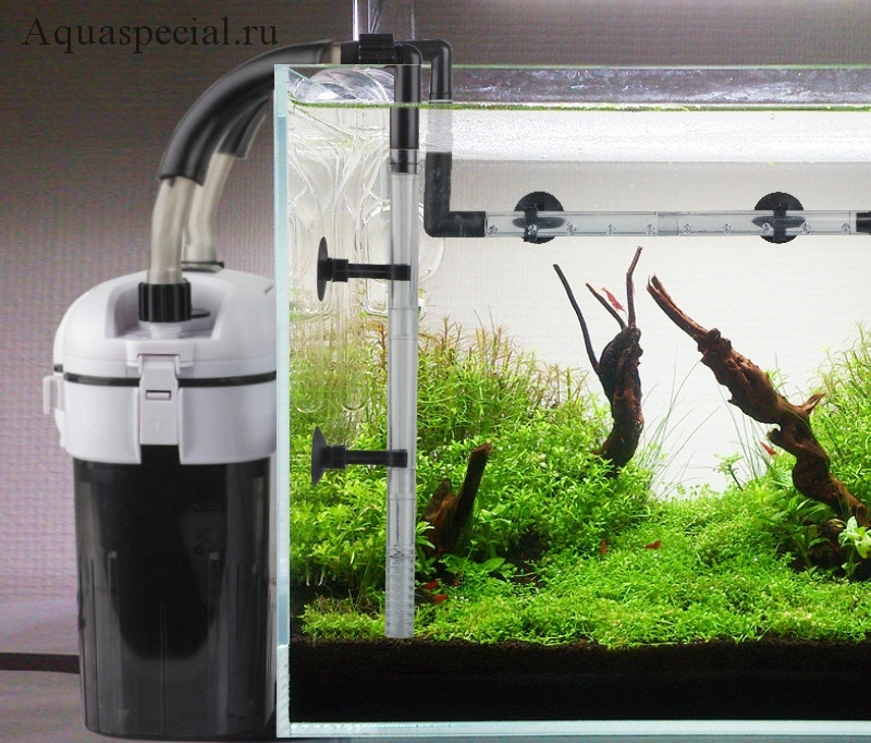 Внешний фильтр для аквариума. Виды аквариумных фильтров. Установка