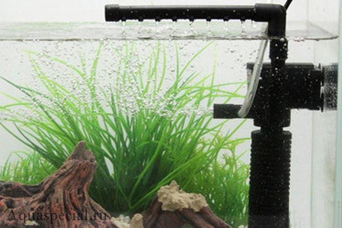 Какой фильтр для аквариума лучше. Виды аквариумных фильтров