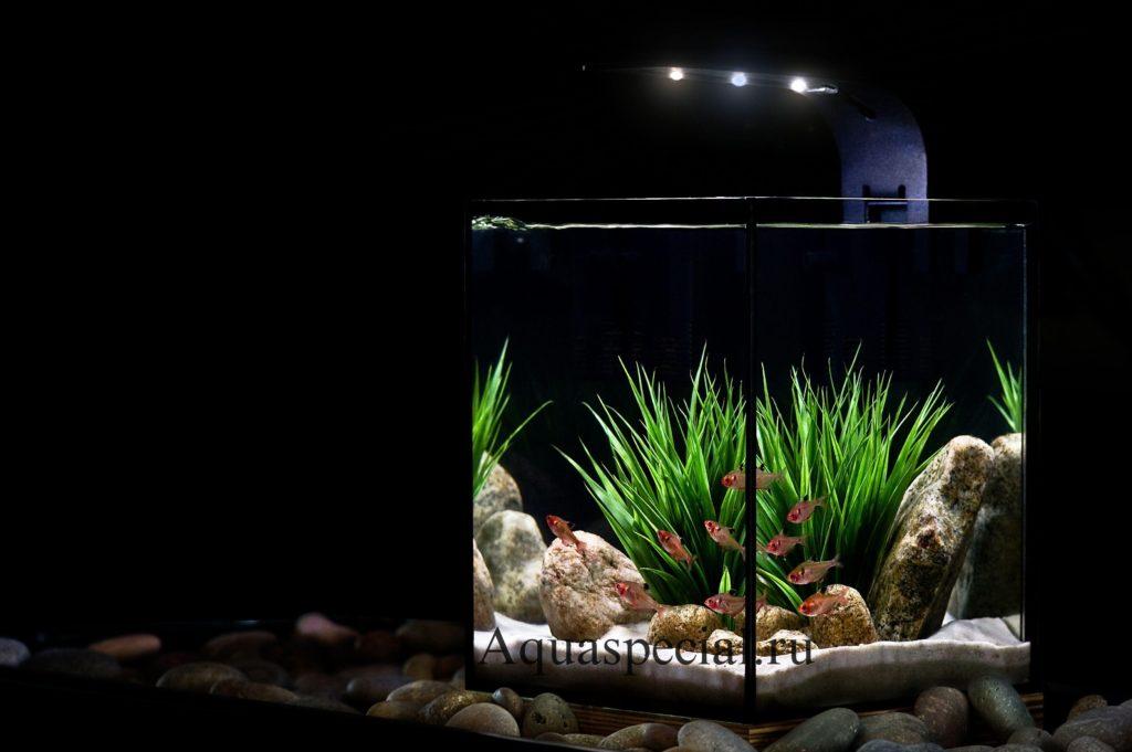 Стили оформления нано аквариума. Какой грунт выбрать