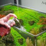 Удобрения для аквариума виды. Как вносить удобрения при запуске аквариума. Жидкие удо для аквариума