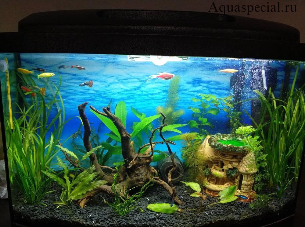 Светильник встроенный. Закрытое освещение для аквариума. Закрытая подсветка для аквариума