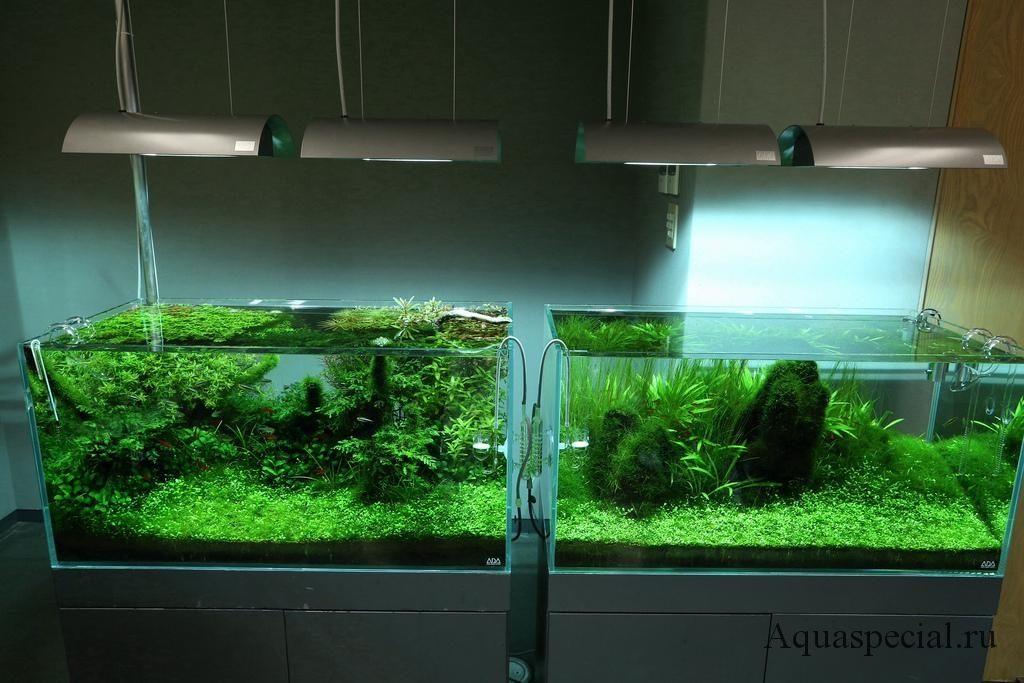 Металлогалогенный светильник для аквариума