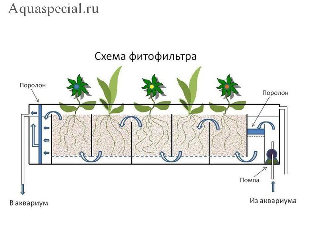 Схема чертеж фитофильтра для аквариума. Фитофильтр своими руками