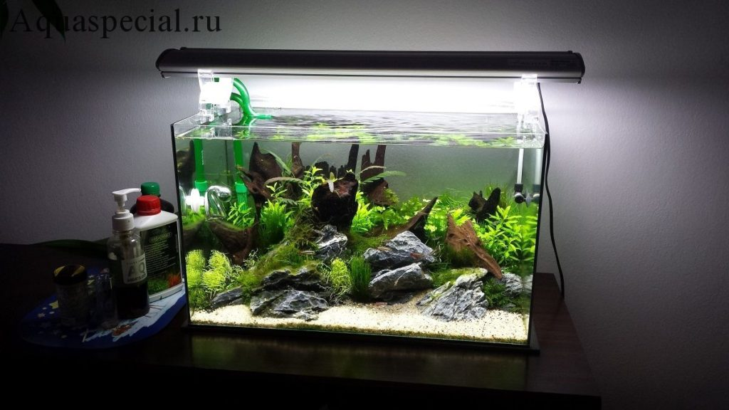 Изготовить аквариум своими руками в домашних условиях инструкция. Как склеить аквариум самостоятельно. Красивый аквариум