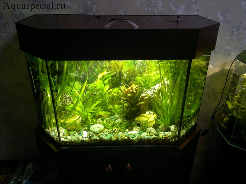 Крышка для аквариума своими руками