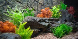 Искусственные растения для аквариума: «за» или «против»